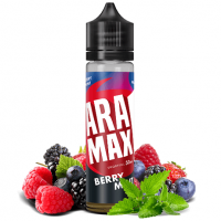 ARAMAX Mix & Go Berry Mint (12ml for 60ml)